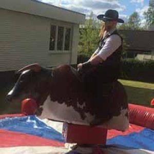 hyra mekanisk tjur / Bullride är lyckat för fest och event